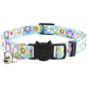 Graffiti cat collar